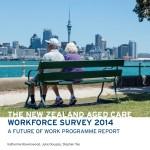 Workforce survey 2014 cover